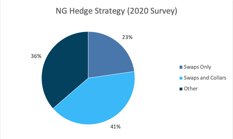 NG Hedge Strategy 2020 Survey Graph - Opportune Hedging Survey April 2021