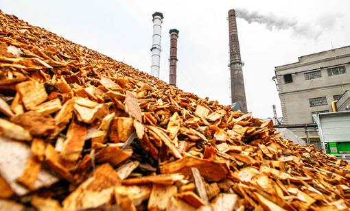 The Obvious Biomass Emissions Error