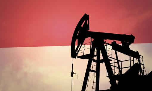 PT Pertamina is looking to apply advanced EOR methods at fields on the Rokan Block. (Source: Shutterstock.com)