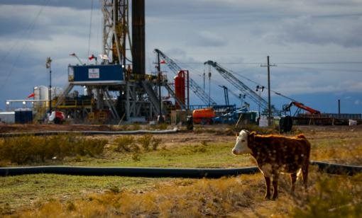 Oil and Gas Investor Cover Story: Animal Spirits